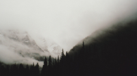 black_and_white_mountains_landscapes_trees_fog_got.jpg